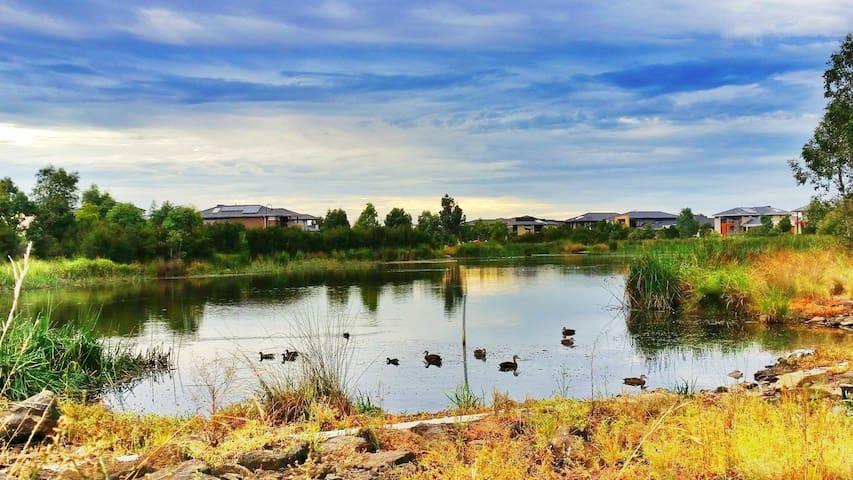 Lakefront serenity - birdlife, shops & city access - Skye
