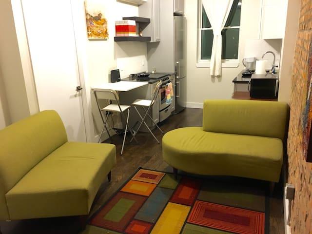 Brooklyn Bachelor Pad - Brooklyn - Appartement