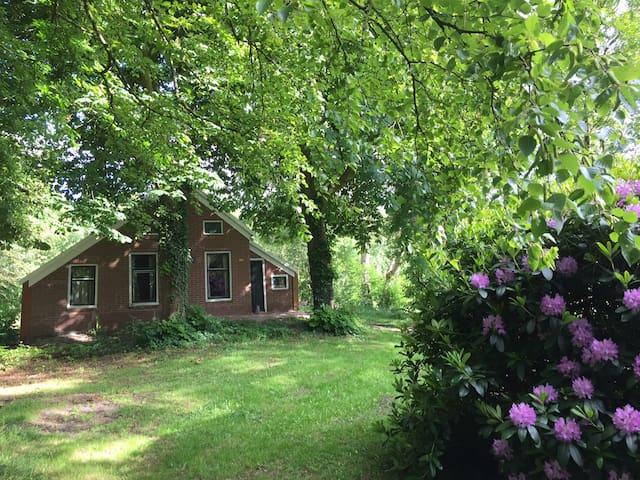 Vakantieboerderij in Groningen - Vriescheloo - Hytte