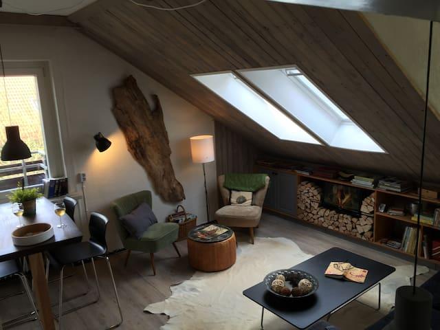 COSY, HIKING, MTB, SKI. - Goslar - Apartemen