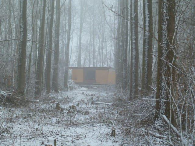 Cabane dans les bois - Fernelmont