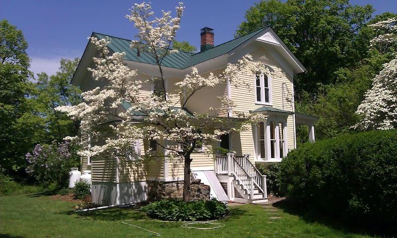 Completely Restored Victorian Retreat - Newtown - Lägenhet