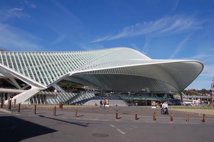 Le Jardin botanique - Liège