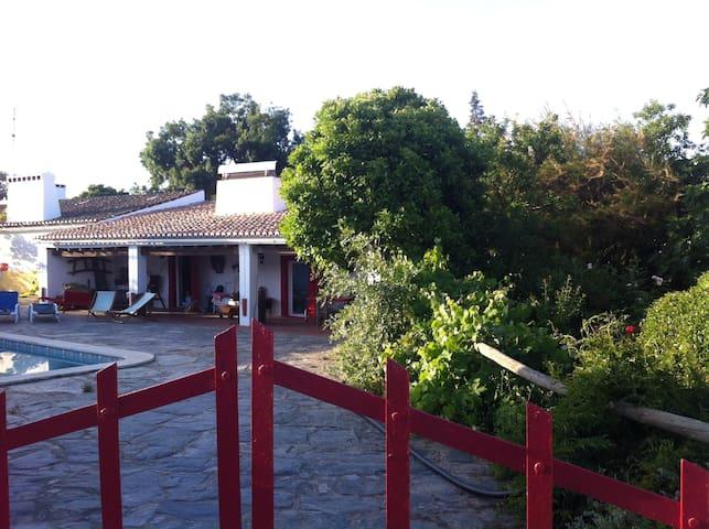 Quinta do Lameirão with Horses - São Bento do Cortiço - Casa