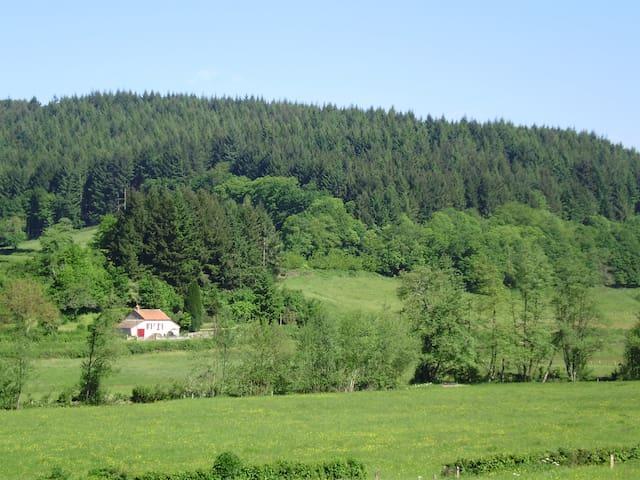 Cottage in the heart of wildlife - Larochemillay - Casa