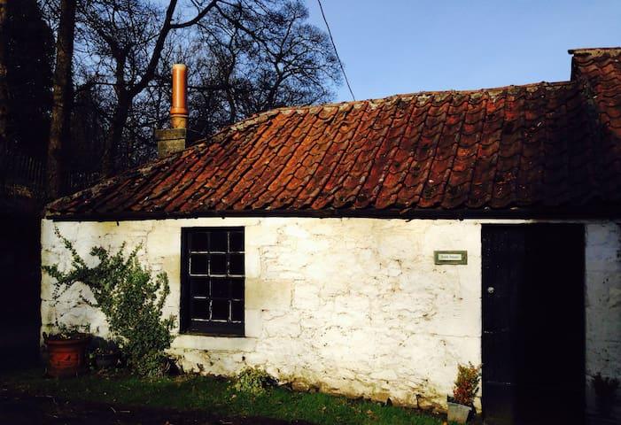 Cutest Bunk house ever - Stirling  - Otros