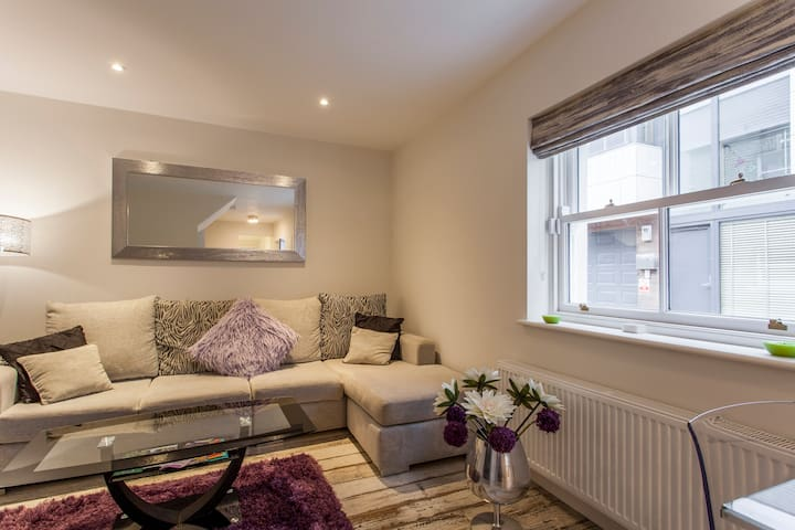 Brand new renovated old town house - Ranelagh