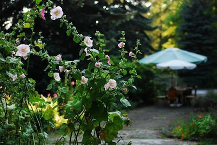 "Willa ""Leśny Ogród"", pokój dla 3 osób - Lanckorona - Villa"