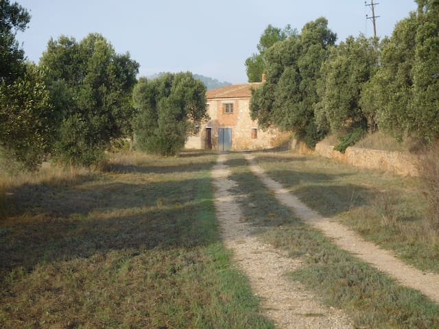 Rustic House on Olive/Almond Grove - Flix