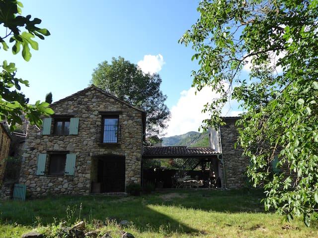Le Petit Moulin, tranquil renovated watermill - Saint-Vincent-d'Olargues