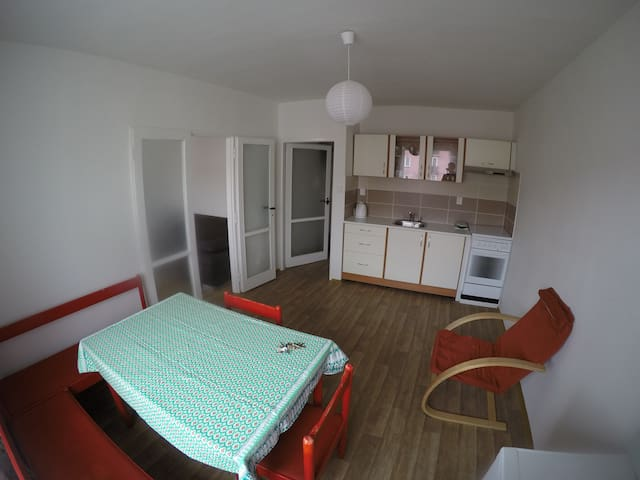 Cosy apartment - citycentrum 10minutes by walk. - Ostrava - Daire