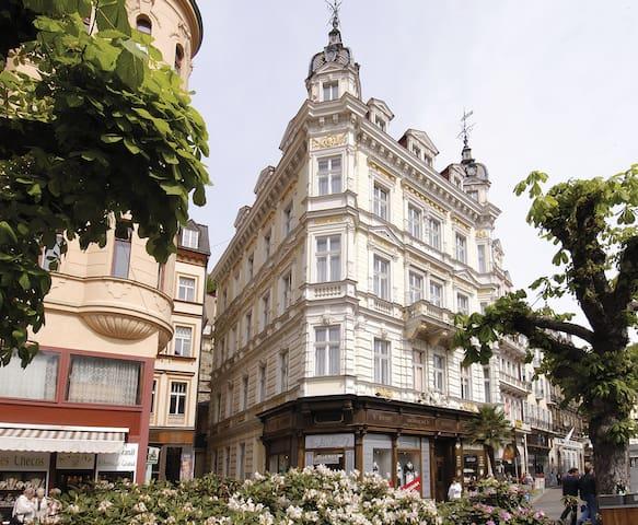 Jen několik kroků od Vřídelní kolon - Karlovy Vary - Hus