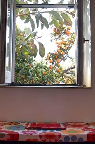 Appartamento Alloro nel Giardino del sole - Roccarainola - B&B/民宿/ペンション