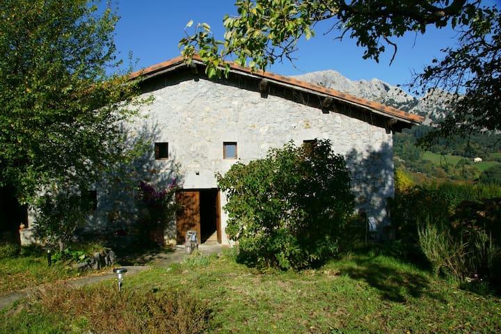 Caserio Larra, parque natural Urkiola, hab. doble - Mañaria - Casa