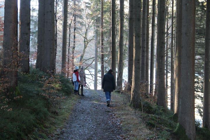 Mitten im Grünen mit Blick auf See und Berge - Immenstadt im Allgäu - Hus