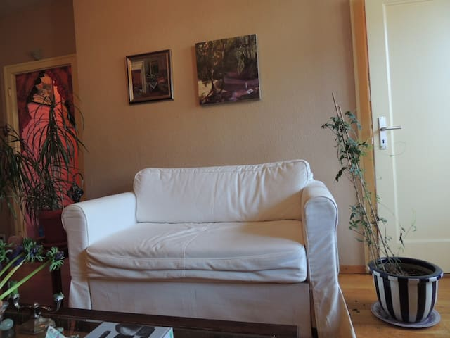 Great 1 bedroom near center and green areas. - Женева - Квартира