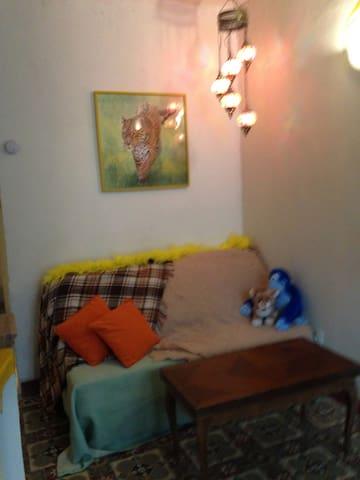 Studio lumineux au pieds des grès d'Annot - Annot - Appartement