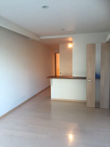Rooms in the city center,is a simple 1 bedroom. - 旭川市 - Departamento