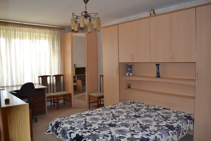 Nice flat near Moscow (30min) - Selyatino - Appartement