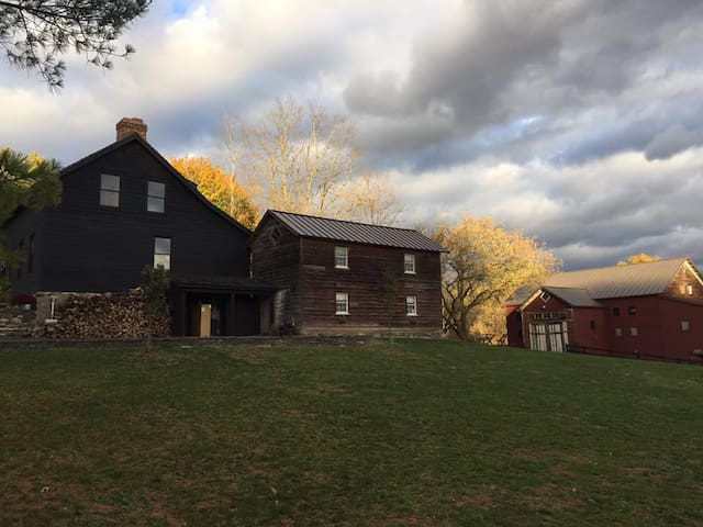 The Owls Nest Cabin - Coxsackie - Zomerhuis/Cottage