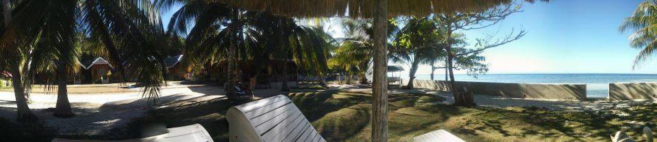 King Cove - Larena