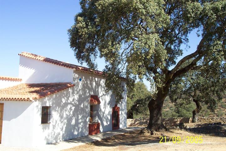 Cortijo La Umbría- Guest House - Cortegana - Huis