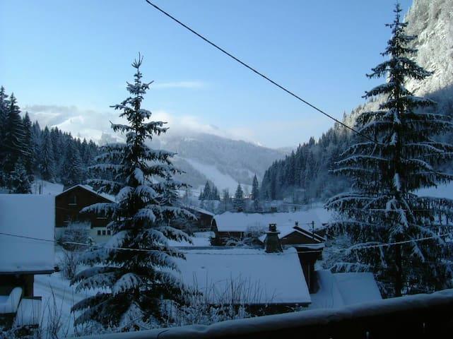 Free ski bus - 20 metres. Sleeps 6-8. Morzine 1km. - Morzine - Huis