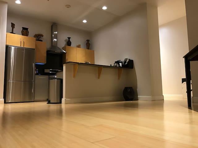 Sleek/Modern Apartment: HEART of Downtown Buffalo - Buffalo - Huoneisto
