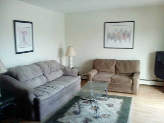 Downtown apartment 50 feet from LCC - Lansing