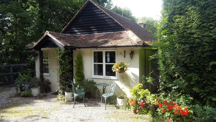 Lodge Midhurst/Petworth South Downs National Park - Midhurst - Houten huisje