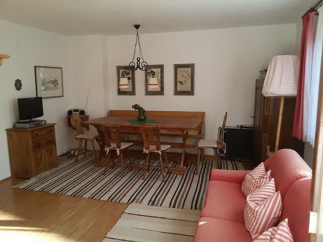 Apartment in the mountains - Flachau - Lägenhet