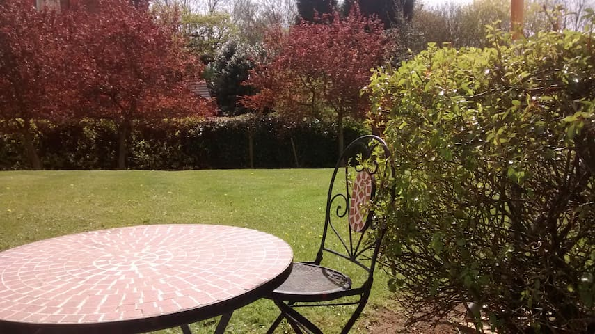 Professional apartment ensuite double with parking - Glenfield - Daire