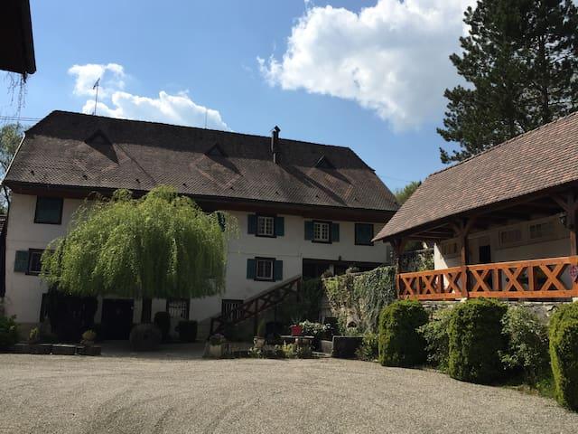 Le Moulin de Huttingue - Oltingue