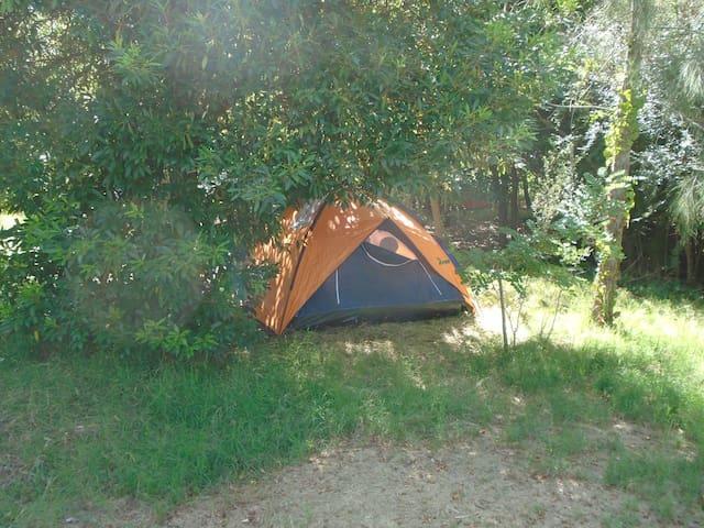 Espacio Cultural , Camping Marindia - Empalme Olmos
