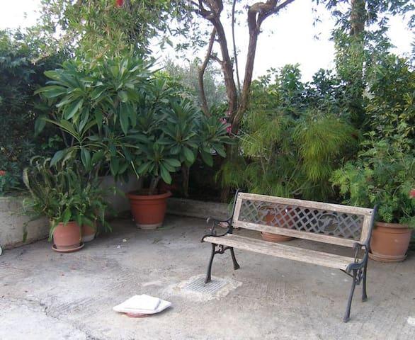 A Green house in Crete - Kamisiana - Casa
