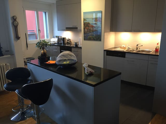 Baselworld - Apt. 4 pers. for 4'000 - Muttenz - Apartamento