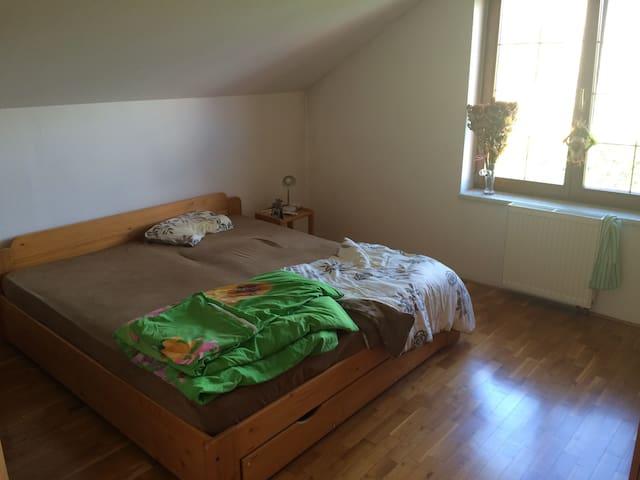Hezký pokoj v domě blízko Roudnice nad Labem - Bechlín - Huis
