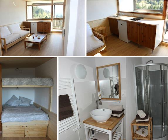 Appartement tout confort au calme - ラ・ブレス (La Bresse)