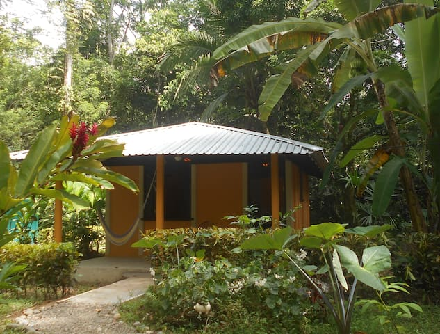 Cabina Mandarina, In the Jungle near the Sea - Cahuita