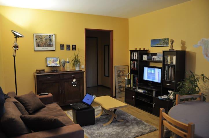 logement agréable - Olivet - Leilighet
