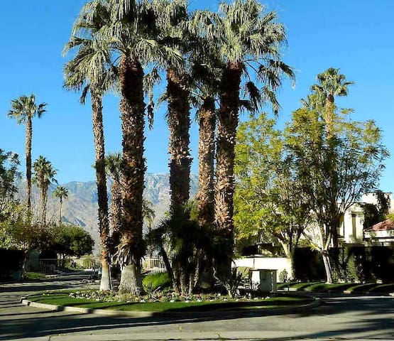 COMFORTABLE, HOMEY DESERT RETREAT - Cathedral City