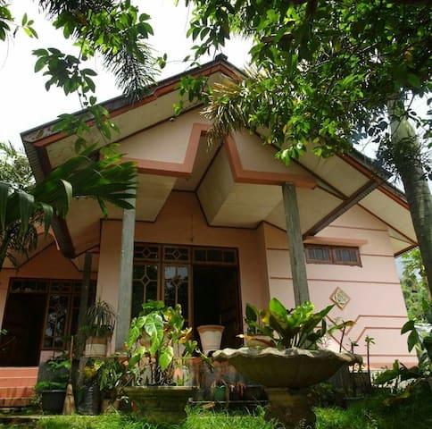 Friendly homestay - Bajawa - Talo