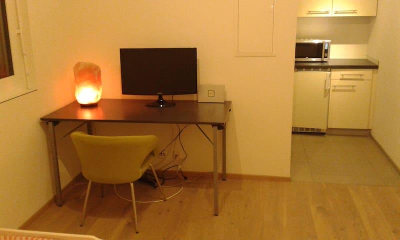 smartes 1 Zimmer Appartement - Au