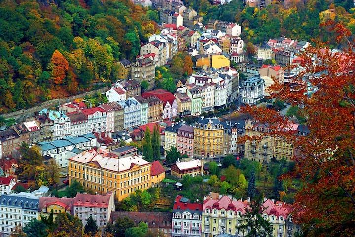 Private room- Karlovy Vary centre - Karlovy Vary - Departamento