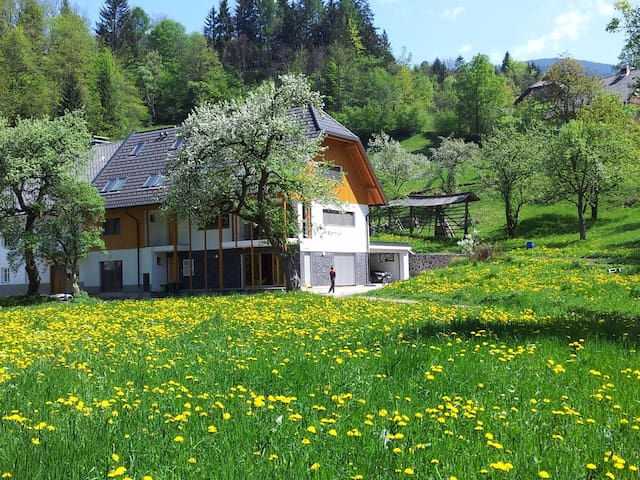 Apartments Storman in the nature - Tržič - Appartement