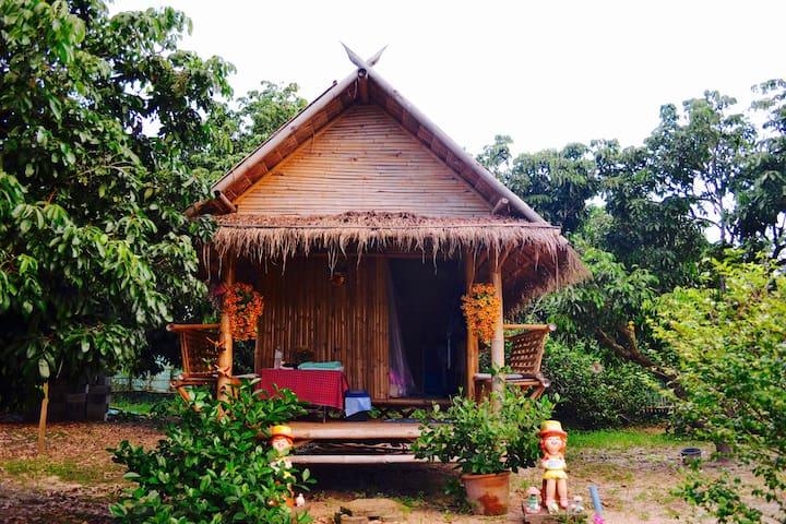 An Adventurer's Paradise Unit #2 - Chiang Mai