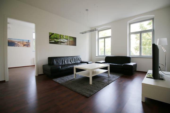 luxuriöse neue Ferienwohnung im Herzen Radebeuls - Radebeul