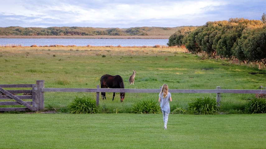 5* Secluded Lake View Rural Retreat in Port Fairy - Port Fairy - Casa