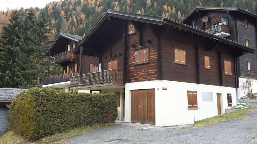 Cosy flat in chalet - Ritzingen - 公寓