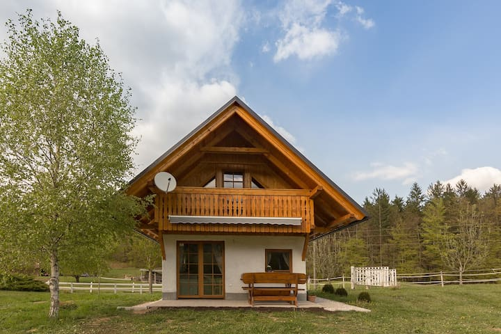 Apartment house in a beautiful nature - Bled - Hus